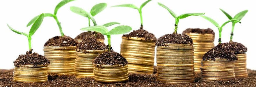 Différents types de placements financiers